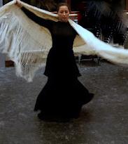 Marie Chantal Bakx Flamenco Arnhem Kampen Ulft